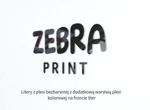 Litery zplexi bezbarwnej i plexi kolorowej